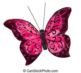 Beautiful pink pretty butterfly insect, isolated on white...