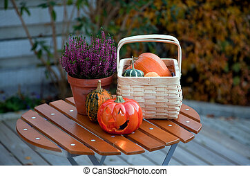 Autumn in the garden - still life with pumkins and jack o...
