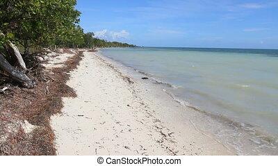 Beach Landscape 2 - A sandy beach in the Florida Keys