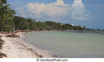 Beach Landscape - A sandy beach in the Flordia Keys. A woman...