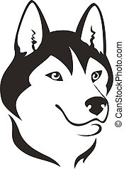 Husky dog head, vector illustration