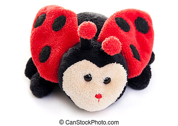 ladybird toy - Ladybird toy isolated on a white background.