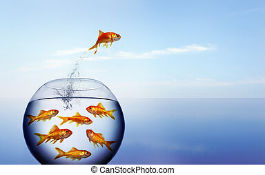 goldfish jumping out of t