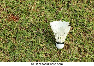 Shuttlecock on a green grass