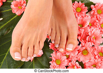 Pedicure - Beauty treatment photo of nice pedicured feet