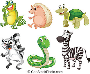 Different species of animals - Illustration of the different...
