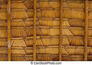 Sugar palm leaf