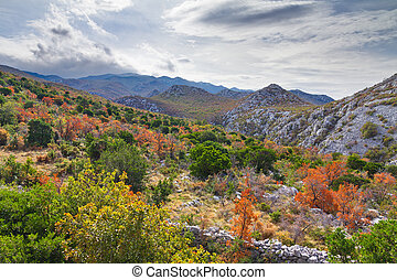 Autumn Croatia - Autumn in the mountains of Velebit national...