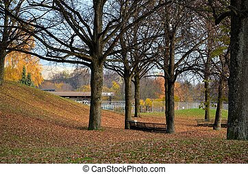 Fall scene at Olympic Park Munich - Trees, leaves and...