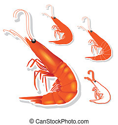 Shrimp vector - The abstract of Shrimp in vector style
