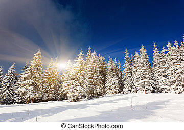 winter - Majestic sunset in the mountains...