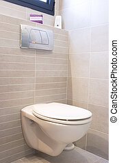 Toilet in home, new design