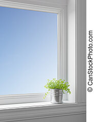Green plant on a windowsill, with blue sky seen through the...