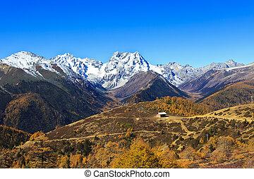 neige, montagne, paysage, automne