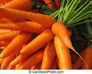 granja, fresco, Zanahorias