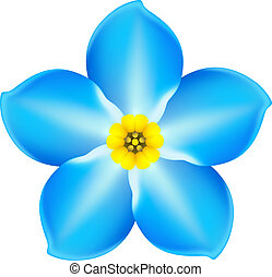Forget-me-not - Vector illustration - blue forget-me-not EPS...