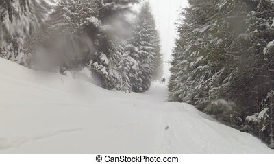 Snowboarding in the mountain forest