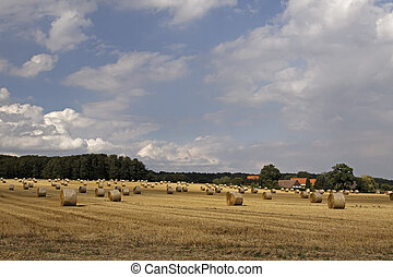 Straw bale in Lower Saxony, Germany - Round baler, straw...