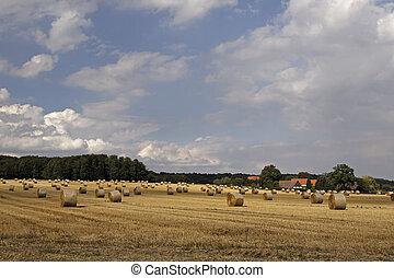 Straw bale in Lower Saxony, Germany - Round baler, straw...