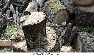 man chop wood with axe - closeup of wood chopping. firewood...