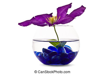 Decorative flowers in glass vase