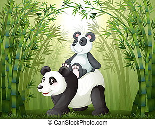 Two pandas inside the bamboo forest - Illustration of the...