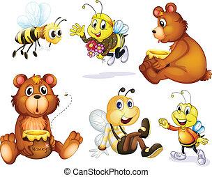 dois, Ursos, Quatro, abelhas