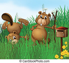 Two beavers beside a wooden mailbox