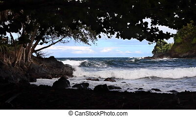 Shady Hawaiian Beach - Looking out from a shady beach at...