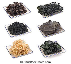 seaweed. dry seaweed on the white background - collection...