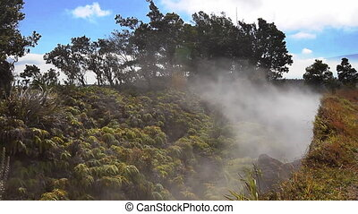 Volcanic Steam Vents - Steam rising from a vent (fumeroles)...