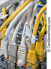 network hub and patch cables - close-up of network hub and...