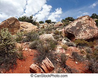 Hike through Red Rock Canyon - Scenic views on paths at Red...
