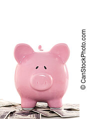 Close up of a pink piggy bank on dollars