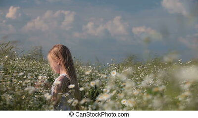 Child picking flowers - A little girl picking flowers on...