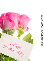 Happy mothers day card with pink roses on white background