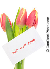Pink and yellow tulips with get well soon greeting on white...