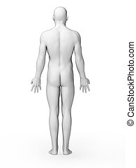 White male - 3d rendered illustration - white male