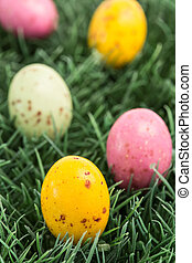 Colourful easter eggs nestled in the grass
