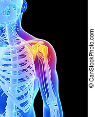 Highlighted - shoulder - 3d rendered illustration - painful...