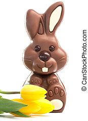 Yellow tulips with cute chocolate bunny