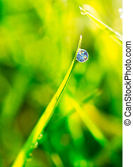 Dew drop on grass extreme close up