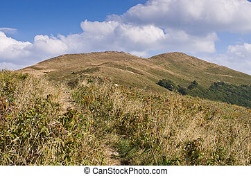Carpathians mountains - Landscape in the Carpathians...