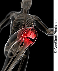 Highlighted knee - 3d rendered illustration - painful knee