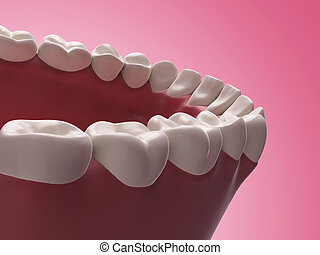 Lower teeth - 3d rendered illustration - lower teeth