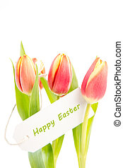 Three tulips with a happy easter card on a white background