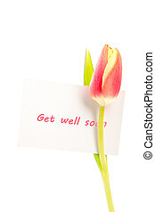 A tulip with a get well soon card on a white background