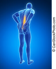 Backache male - 3d rendered illustration - backache male