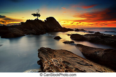 The Bonsai - Sunset View from Labuan Island, Malaysia