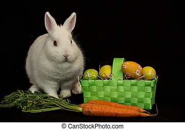 Easter bunny with green basket of eggs and carrots on black...